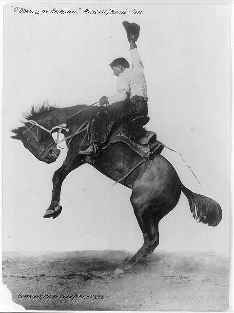 Horse-overwhelming_cowboy_(1911)_by_unknown