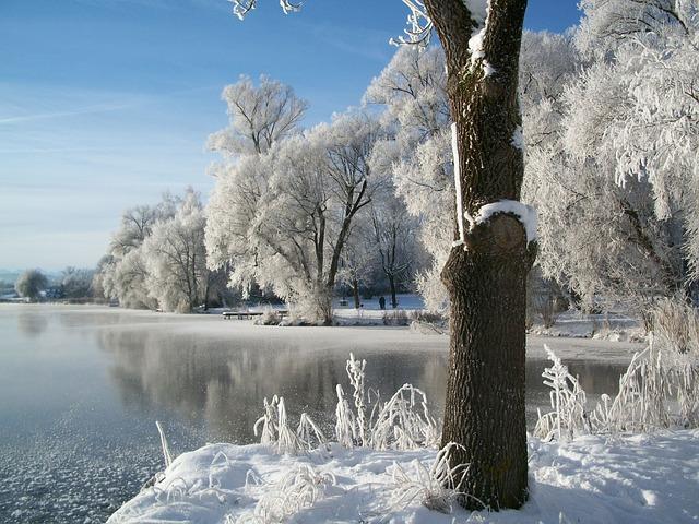 winter-210307_640