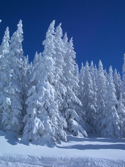 winter-214305_640