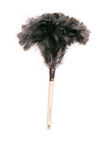 Feather duster courtesy of Robert E Rempher